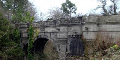 Anjing Sering Bunuh Diri Dari Jembatan