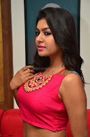 Akshita super cute Pink Choli at south indian thalis and filmy breakfast in Filmy Junction inaguration by Gopichand ~  Exclusive 084.JPG