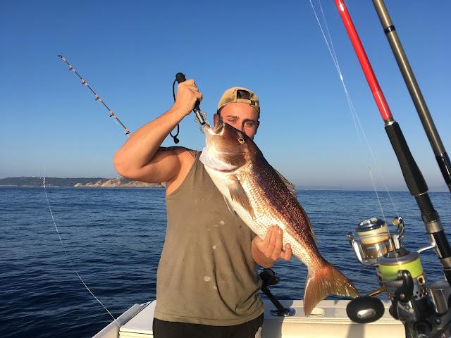 pêche du denti