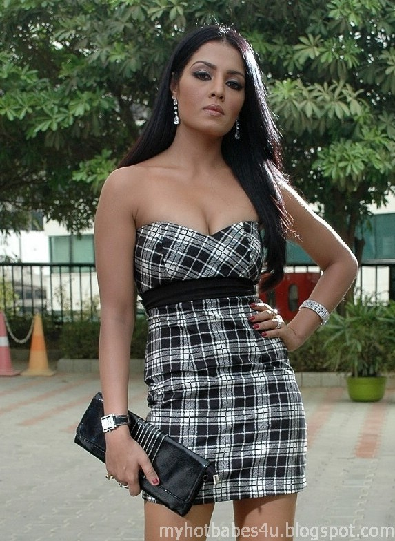 You Will Get Hot Pics Here Sexy Celina Jaitley-6452