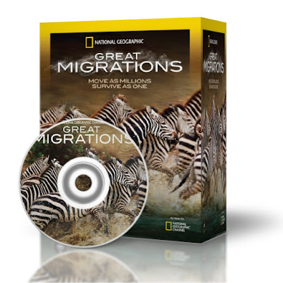National Geographic: Great Migrations 2010