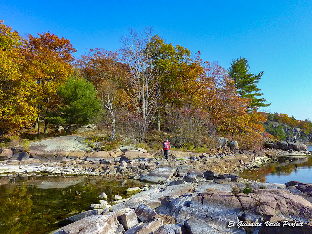 Wellesley Island State Park, NY por El Guisante Verde Project