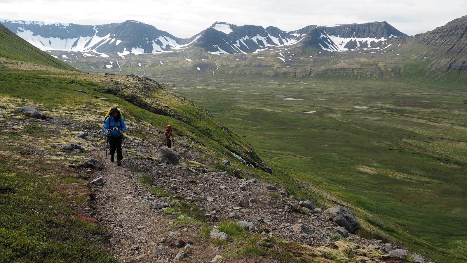 półwysep Hornstrandir, trekking na Islandii