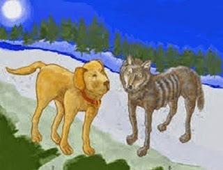 Il lupo e il cane (Fedro)