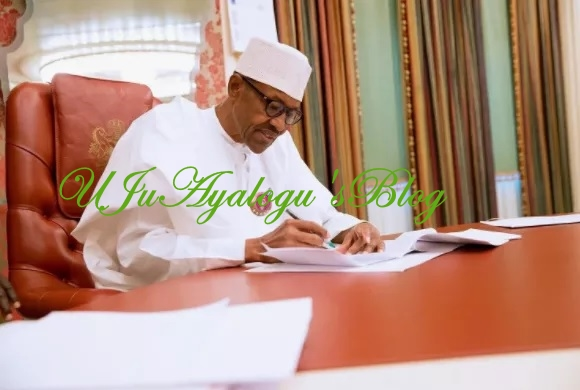 Buhari Signs White Paper that Bars Public Doctors from Owning Private Hospitals