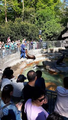 Ein Besuch im Zoo Basel – oder liebevoll gesagt: im Zolli