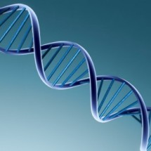 Descobertos genes alienígenas em DNA humano