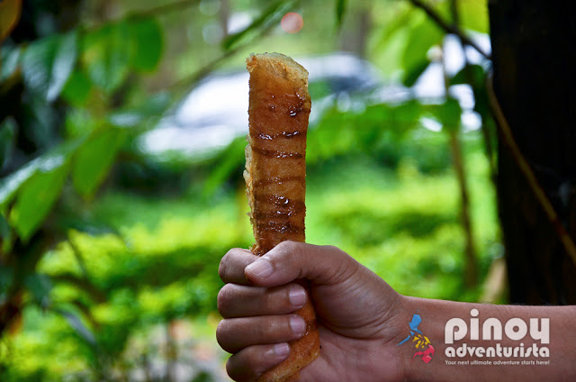 10 common Filipino Street Foods in the Philippines