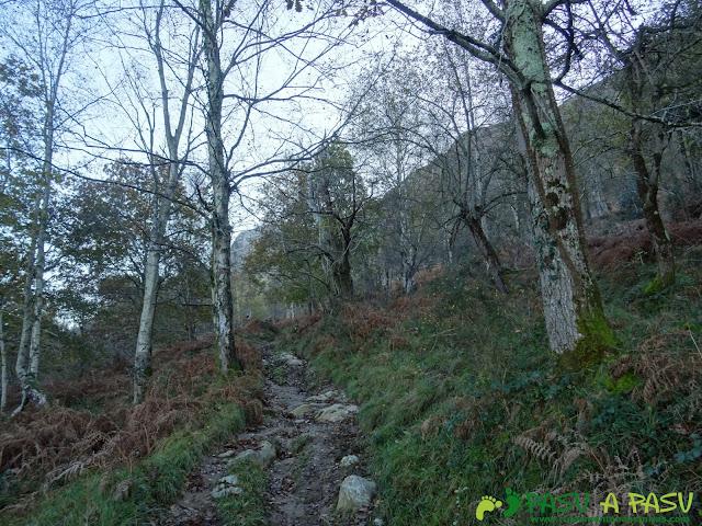 Ruta Cerro de Llabres: Subiendo al Collado la Prida