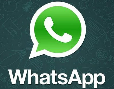 Download WhatsApp  0.2.2731 for Windows All Version