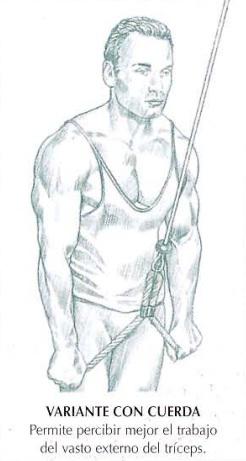 Extensión de tríceps en polea alta con cuerda