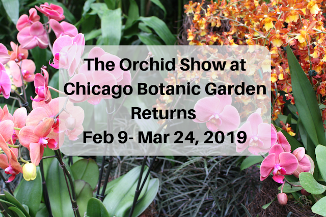 Orchid Show Returns to Chicago Botanic Garden February 9, 2019-March 24, 2019