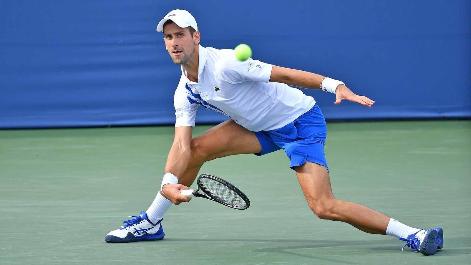 Djokovic y Raonic buscan el título en Cincinnati