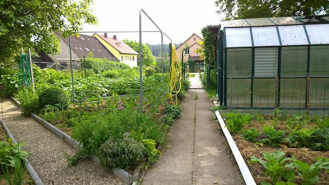 Gemüsegarten im Juni (c) by Joachim Wenk