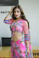 Actress Angela Krislinzki in Pink Saree Blouse Exclusive Pics March 2017 ~  073.JPG