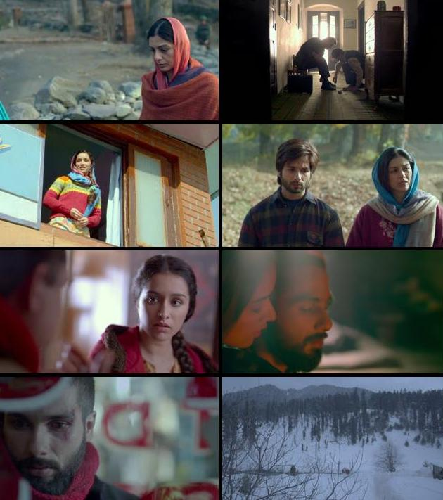 Haider 2014 Hindi 720p BluRay x264