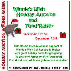 Winnies Wish Auction