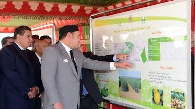 الملك يكلّف أخنوش ببلورة تصور استراتيجي شامل للتنمية الفلاحية