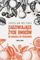 https://ksiegarnia.bellona.pl/?c=ksiazka&bid=9283
