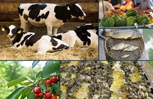 172 εκατ. ευρώ για την προώθηση των γεωργικών προϊόντων από την ΕΕ