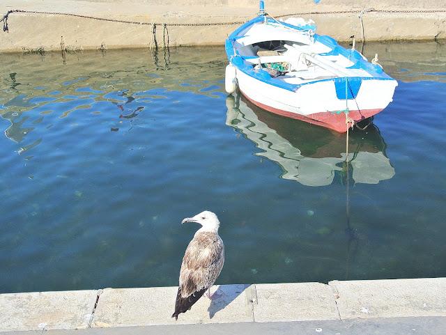 Isola Delle Femmine Palermo, Sycylia