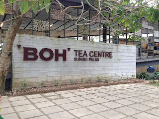 BOH Tea Centre Sungei Palas