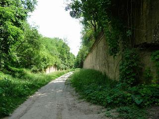 Тараканов. Форт. Зелёные лианы прикрывают фортификационное сооружение