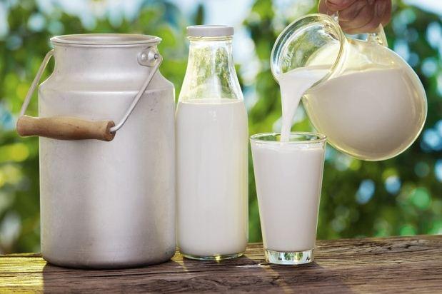 susu asli