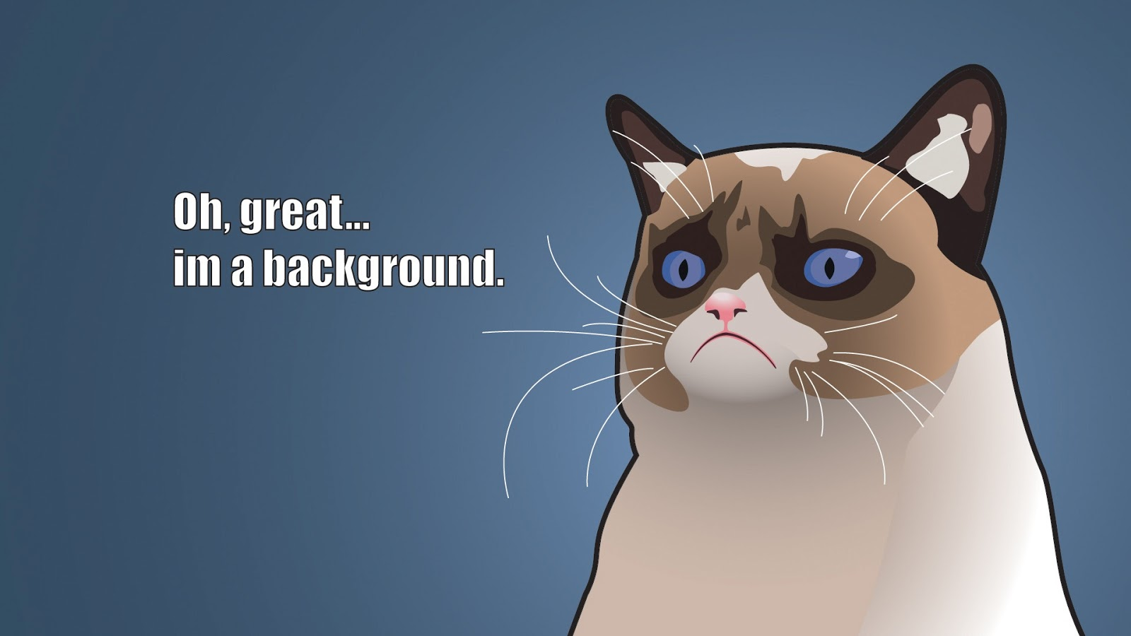 angry cat meme cartoon - photo #2