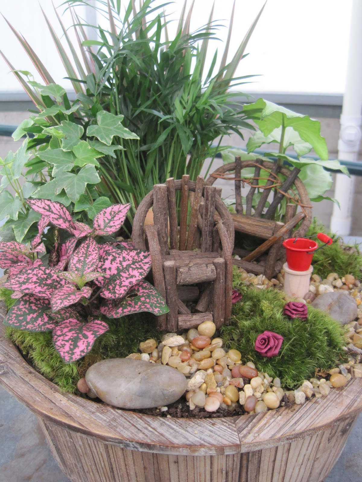 Plants Flowers and Such Fairy Gardening