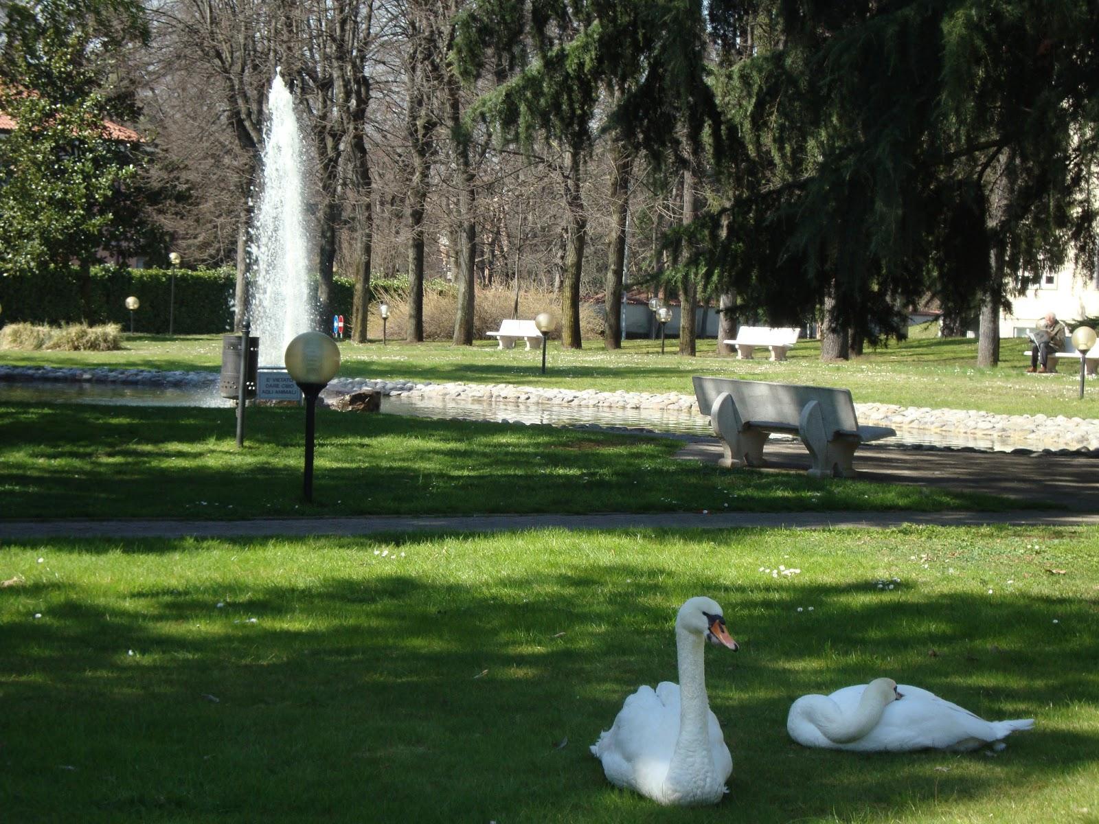 Cool cheap eu un grande giardino con vialetti ben curati - Giardini curati ...