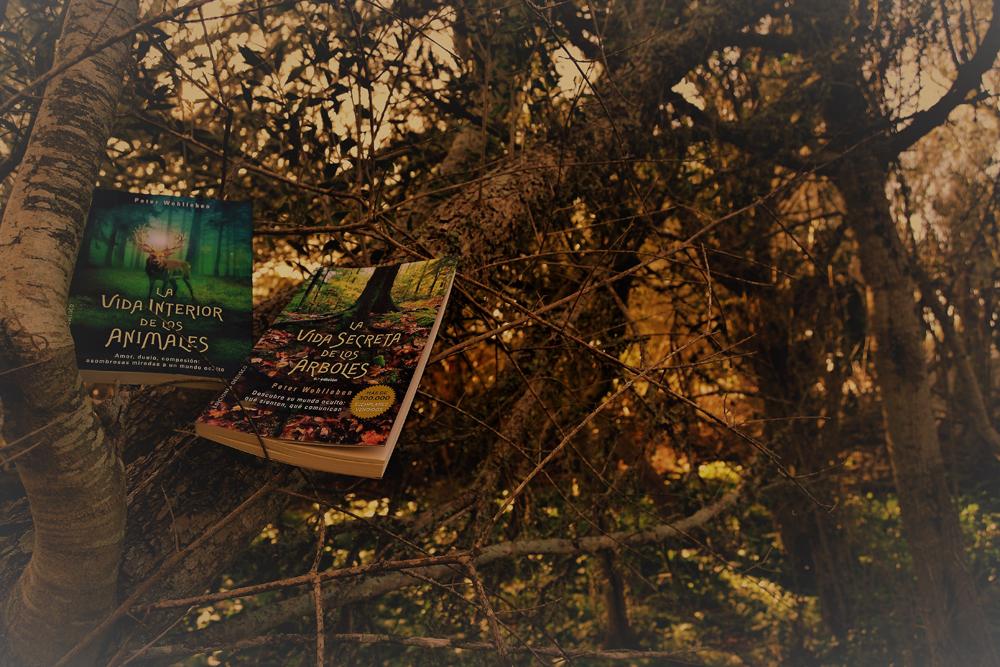 ¿Quieres saber qué leer estas navidades? La vida secreta de los animales y la vida secreta de los arboles, dos obras imprescindibles si amas la naturaleza