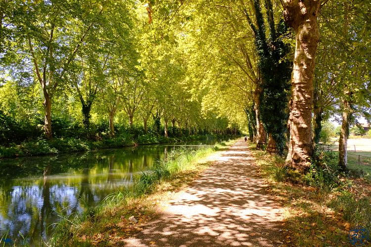 Le Chameau Bleu - Blog Voyage dans le Lot Et Garonne - Photo du Lot Et Garonne Canal des deux Mers