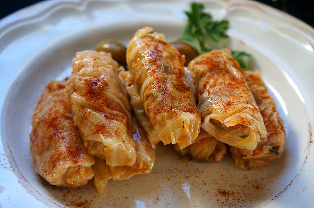 Cabbage Roll with Leek & Red Sauce