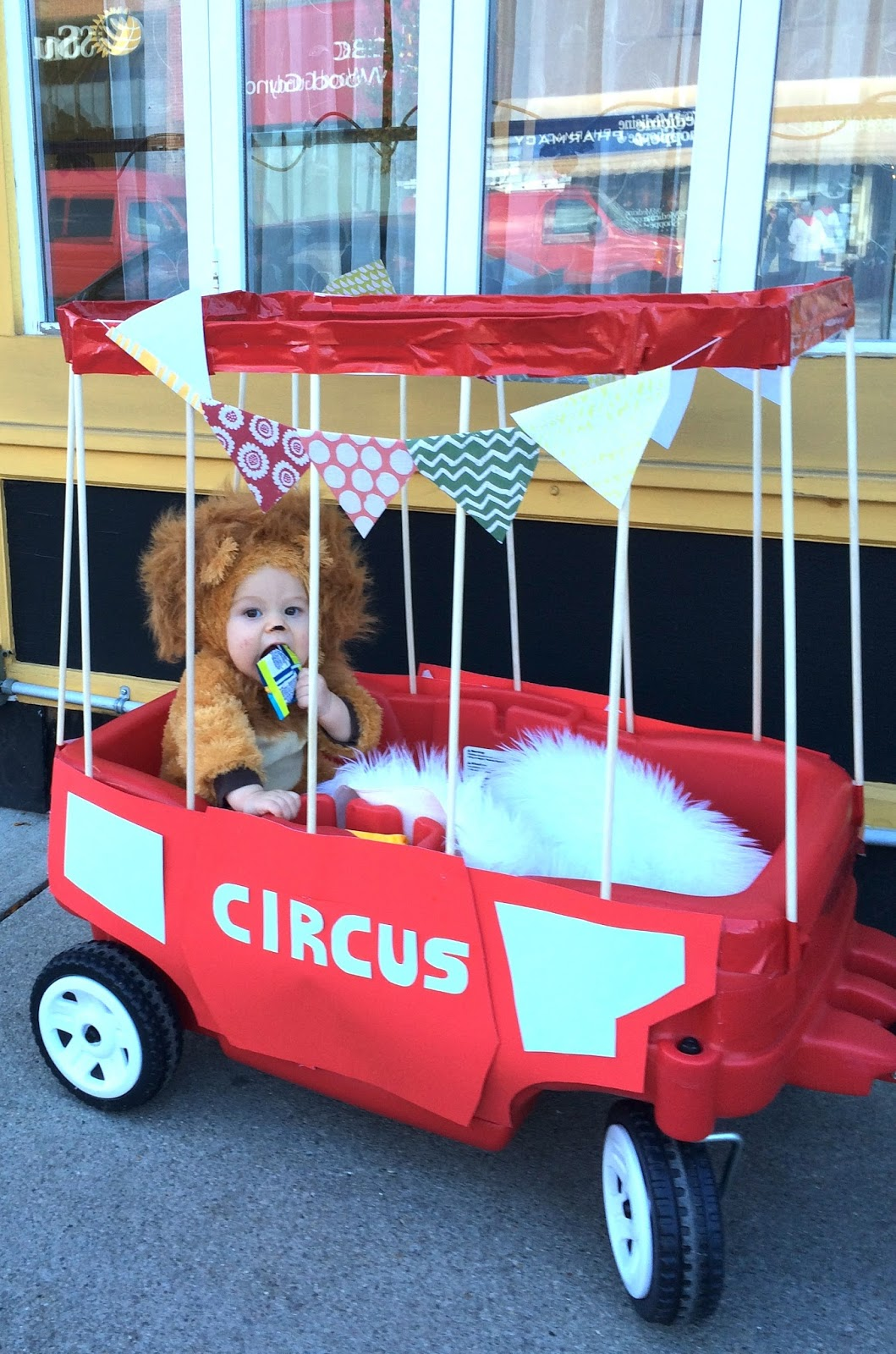 DIY Halloween Baby Circus Lion Harlow Amp Thistle Home