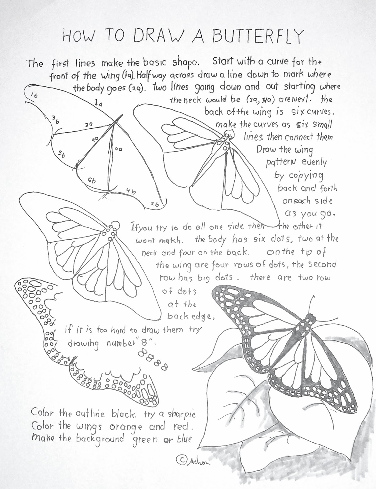 Worksheets Butterfly Worksheets how to draw worksheets for the young artist a monarch butterfly worksheet