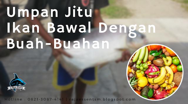 https://rajaessentsm.blogspot.com/2019/01/umpan-ikan-bawal-dengan-buah-buahan.html