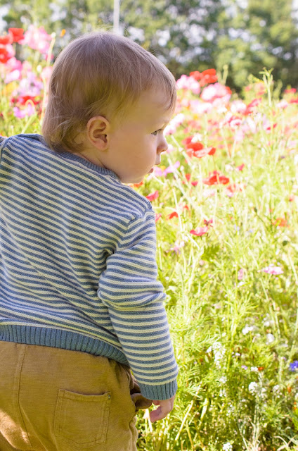 Jonah in front of the wild flowers