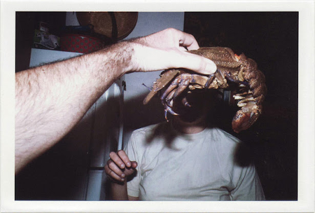 dirty photos - fumus - a photo of hand holding lobster