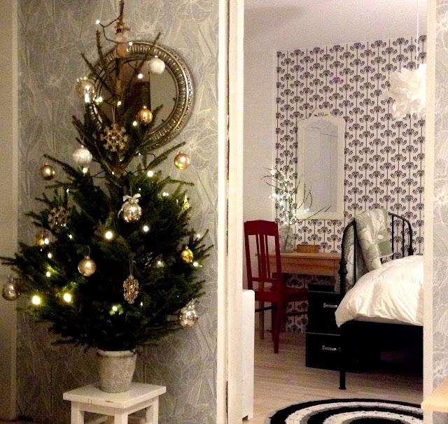 joulukuusi, koriste, koti