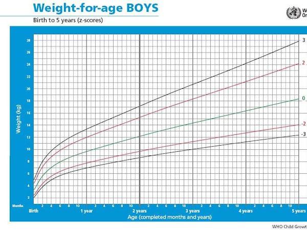 Cara Membaca Kurva Pertumbuhan Anak 0-59 Bulan di Buku KIA