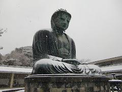 鎌倉大仏・雪