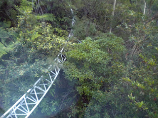 Interesting Read: Orphan Rocker, The Coaster at Scenic World