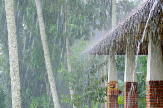 Tozali Essential Tips For Rainy Season Travel
