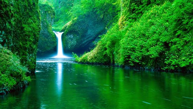 Papel de Parede Paisagem Verde da Natureza para pc hd 3d gratis nature desktop wallpaper