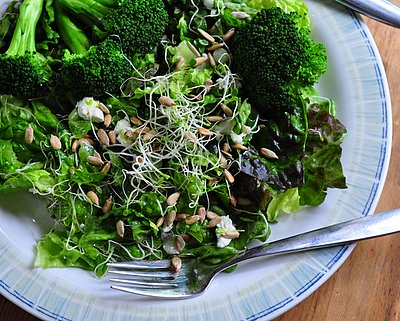 Lemony Broccoli with Lemon Vinaigrette, another healthy salad ♥ AVeggieVenture.com.