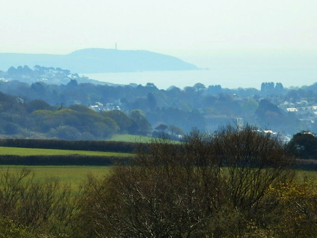 Views across to Gribbin Head and the sea, Cornwall
