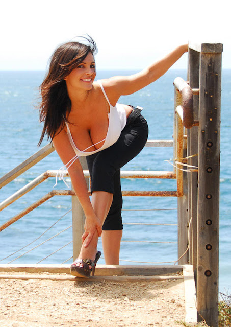 image of denise milani