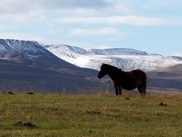 Exploring Northern Iceland