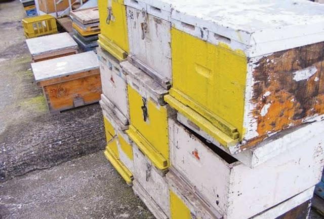 Ν. Καρακωστίδης: «Οι κλέφτες των μελισσιών είναι μελισσοκόμοι!»